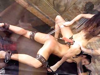 Rulers - Jessica - Queensnake.com